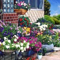 ガーデン菊地家