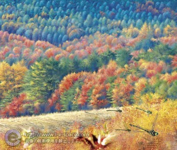 風景 秋 とんぼ 山
