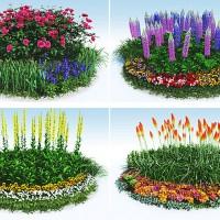 円花壇4種