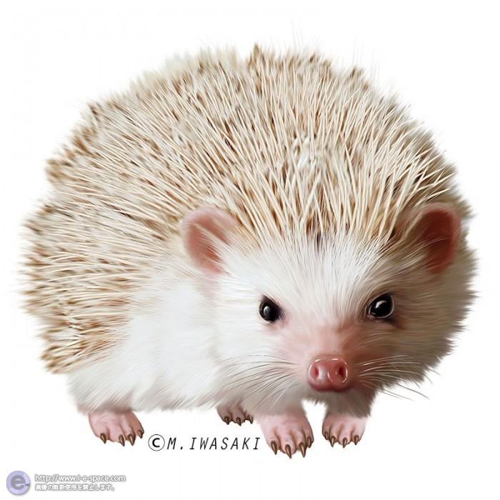 動物リアルイラスト | ネズミと...