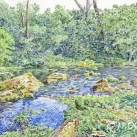 新緑のグダリ沼