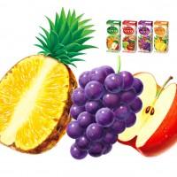 農協 ベジタブル&フルーツジュース パッケージイラスト