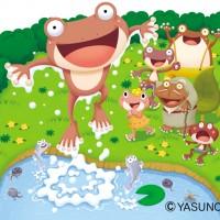 小さな池のカエルたち