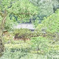 東慶寺、色鉛筆画