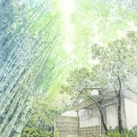 竹の寺、色鉛筆画