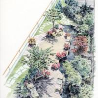 屋上庭園、色鉛筆画
