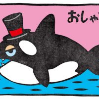 海のおしゃれ番長