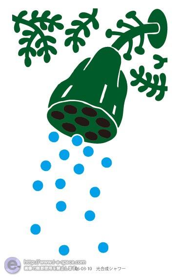 光合成シャワー