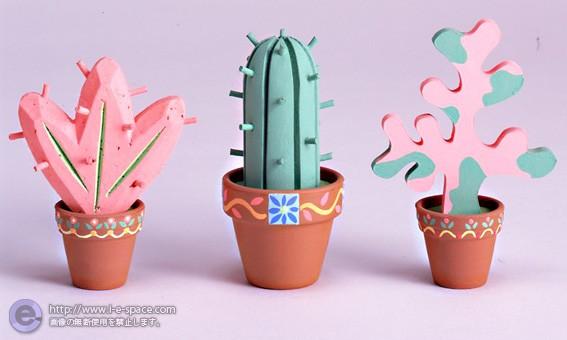 メキシコの植物