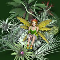 FLOWER FAIRIES-A