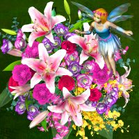 FLOWER FAIRIES-B