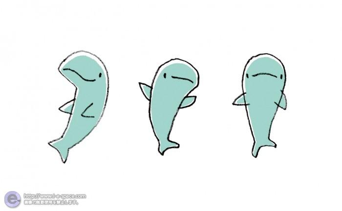 イルカ キャラクター