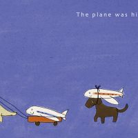 The plane was hijacked.