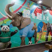 動物イラスト・サイボウズイベント会場・ 動物リアルイラスト展示・幕張メッセ3
