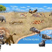 動物リアルイラスト・アフリカ草原