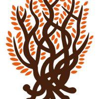 蛇の樹、炎上する